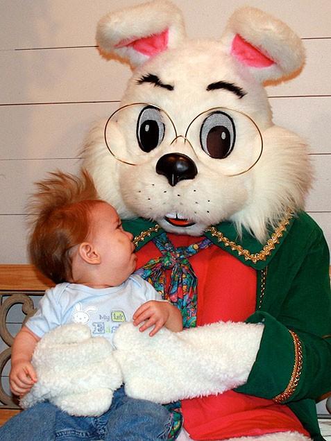 bunny 17