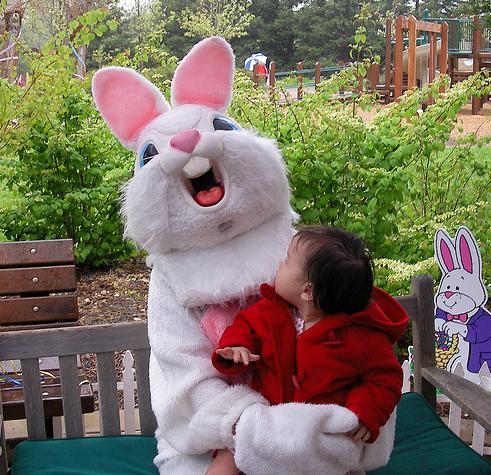 bunny 22