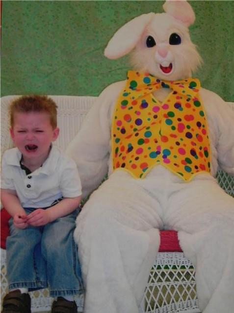 bunny 5