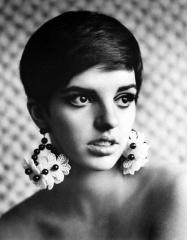 Liza-Minnelli 1