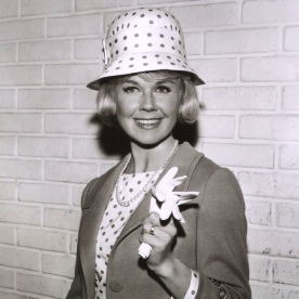 doris day 2