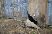 street-art-by-oak-oak-10