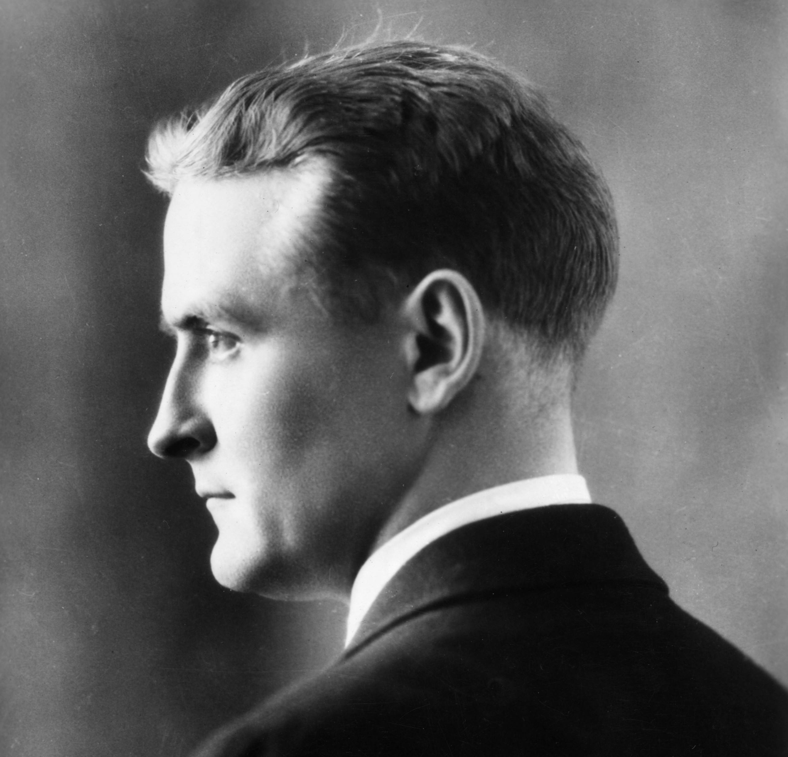 a brief biography of f scott fitzgerald and a summary of his novel the great gatsby F scott fitzgerald biography - francis scott key  the great gatsby, which many consider his  fitzgerald began working on his fourth novel during the.