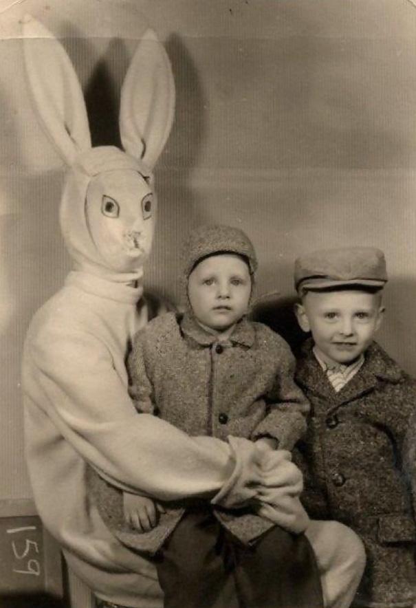 bunny 01