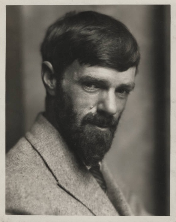 D. H. Lawrence 01