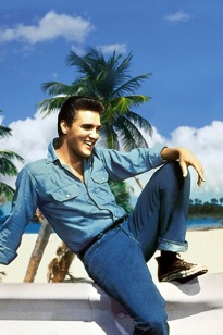 denim elvis