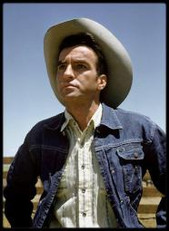 montgomery clift denim