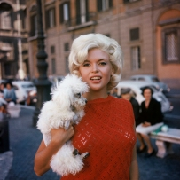 American actress and sexual icon Jayne Mansfield with his dog. Rome, ITALY - 06/1962